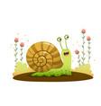 cute cartoon snail crawling vector image