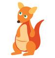 cute kangaroo on white background vector image vector image