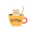 funny kitten sitting in a cup coffee vector image vector image