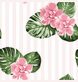 pink camelia flowers green monstera leaves on vector image vector image