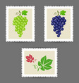 postage stamps with grape bunch icons vector image vector image