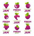 raspberry cherry blueberry berry jam and fresh vector image vector image