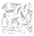 set of olives olive oil bottles and olives vector image