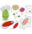 Food ingredient vector image vector image