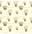 Garden seamless pattern with potted flowers vector image vector image