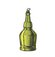 hand drawn screw cap color bottle of beer vector image