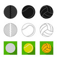 Isolated object of sport and ball icon set of