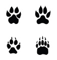 lion tiger wolf bear footprint vector image vector image