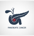 pancreatic cancer icon design vector image vector image