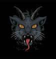 satanic cat head vector image