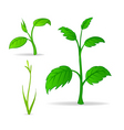 set of green cartoon plants vector image vector image