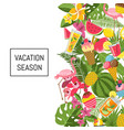 summer cocktails flamingo palm leaves background vector image