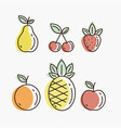 fruit icons detailed vector image