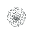 dahlia flower simple black lined icon on white vector image vector image