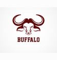 head of bull buffalo logo and symbol vector image