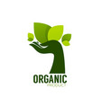 nature product logo ecological symbol and sign vector image vector image