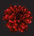pointillism style dahlia vector image vector image