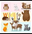 Set of Wild animals 2 vector image vector image