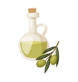 Glass bottle of premium virgin olive oil and some vector image