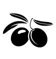 Two olives with leaves vector image