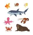Cartoon set goldfish snail shark fish butterfly vector image
