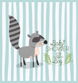 baby shower card with cute raccoon vector image vector image