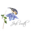 blue flower bird name card vector image vector image