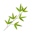 Colourful Bamboo Leaves vector image vector image