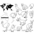 educational australian animals color book page vector image vector image