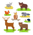 forest animals set flat with vector image vector image