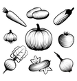 Monochromatic Vegetables Set vector image vector image