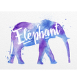 Painted animals elephant vector image vector image