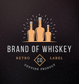 Whiskey Bottles Vintage Retro Design Elements for vector image
