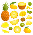 bright set of pineapple mango kiwi vector image