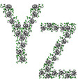 hand drawing ornamental alphabet letter yz vector image vector image