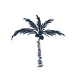 palm tree silhouette icon isolated on white vector image vector image
