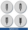 spikelet light icons vector image vector image