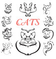 abstract cats set vector image