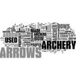 archery arrows text word cloud concept vector image vector image