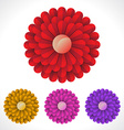 Blossom flower vector image vector image