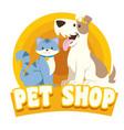 cat dog petshop design vector image
