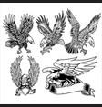 eagle wing fly hawk black vector image