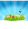 Green Grass With Flowers And Paper vector image vector image