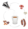 Hot Coffee in Disposable Cup with Civet Coffee vector image vector image