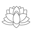 indian lotus flower vector image