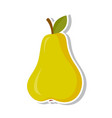 pear sweet fruit isolated fruit on white vector image vector image