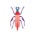 beetle insect cute colorful bug top view vector image vector image