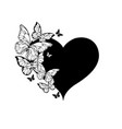 black heart with contour butterflies vector image
