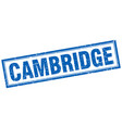 cambridge blue square grunge stamp on white vector image vector image