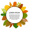 colorful autumn leaves under white round label vector image vector image